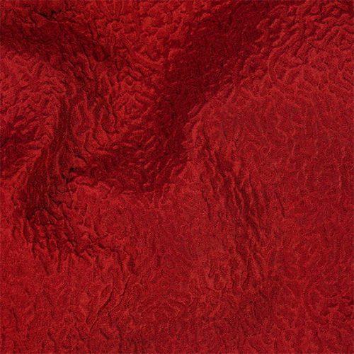 RX21835-Savoia-Unito